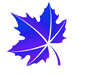 icon-leaf-6.png