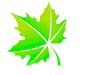 icon-leaf-3.png
