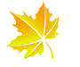 icon-leaf-2.png