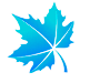 icon-leaf-4.png