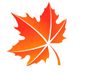 icon-leaf-1.png