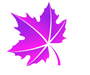 icon-leaf-5.png