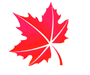 icon-leaf-7.png
